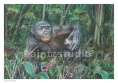 Chimpanzee print ape monkey holding can surreal by Paintzstudio