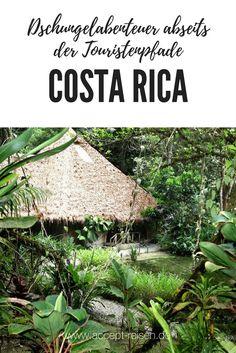 Costa Rica Urlaub in der ökologisch geführten Silva Bananito Lodge mitten im Bergregenwald.