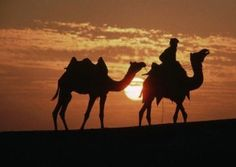 Holiday in Rajasthan imperial tour to india