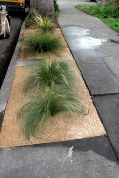DIY for curbside landscaping. I like the blog it's on.