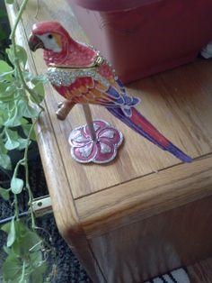"""Bejeweled Parrot Trinket Box""         In ""Swarvoski Crystals"""