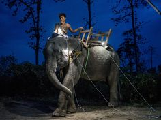 A man sits atop an elephant in the Bago region of Myanmar in this National Geographic Photo of the Day.
