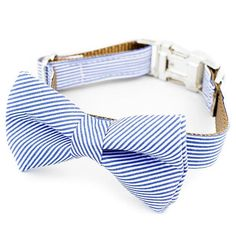 Bow Tie Dog Collar Blue Stripe