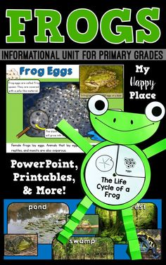 This frog unit includes an informational PowerPoint and many activities to get your students learning and writing about frogs! non-fiction, life cycle, kindergarten, first grade 1st Grade Science, Elementary Science, Science For Kids, Teaching Main Idea, Teaching Themes, Kindergarten Units, Kindergarten Activities, Science Activities, Informational Writing