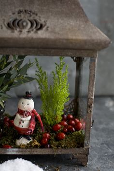 Snowman Terrarium - great use for old lamps/light fixtures!