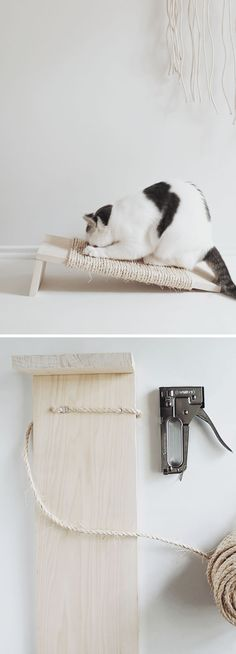 10 Step-by-Step Home Cat Scratchers - Cocolargol Mateos - - 10 Arranhadores Caseiros para Gatos passo a passo 10 Step-by-Step Home Cat Scratchers Cat Care Tips, Pet Care, Cat Steps, Diy Cat Toys, Cat Scratching Post, Super Cat, Cat Scratcher, Cat Room, Cat Wall