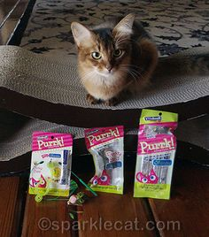 Check out these cool Purrk Playfuls cat toys from Vitakraft! You want one? Enter to win one here: http://www.sparklecat.com/special/i-love-vitakraft-purrk-playfuls-with-felinesilvervine-and-you-can-win-one