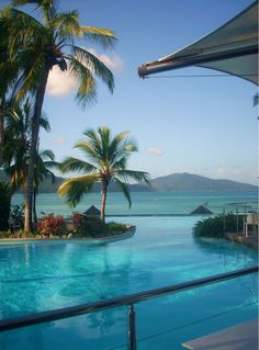 Hamilton Island, QLD Pool overlooking the ocean