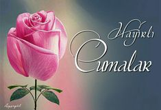 #Cuma mesajlar #Hayirli Cumalar #Hayırlı cumalar #HayirliCumalar #Hayırlıcumalar #Cumamesajları #cumamesajlari #islam #Cuma #Kadirgecesi #Kadir #kandil #resimlicuma #arefe Rose, Flowers, Twitter, Quotes, Youtube, Rose Buds, Messages, Poems, Quote