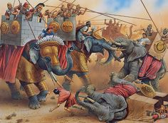 """""""Indian war elephants of Antiochus III and african war elephants of Ptolemy IV in the Battle at Raphia, 217 BC"""""""