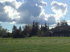 A farm in Skagit County.