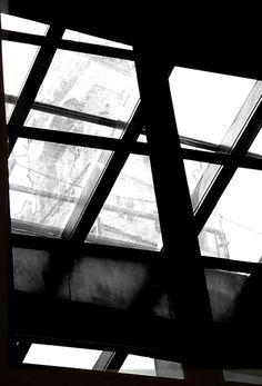Firenze palazzo vecchio