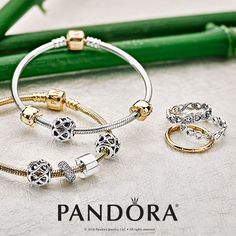 Who ever said that sterling silver and gold don't mix? Two-tone style is on trend this season, so mix and match your PANDORA Jewellery favourites! New Pandora Charms, Pandora Jewelry, Gold Jewelry, Jewellery, Mixed Metals, Bracelet Designs, Rose Gold, Charmed, Jewels