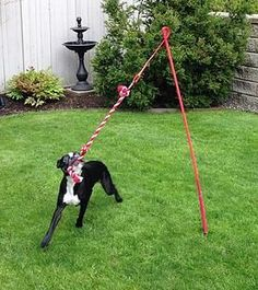 Tether tug outdoor dog toy super fun interactive dog toy diy for dogs square knot fleece tug toy Diy Pour Chien, Hotel Pet, Canis, Dog Backyard, Backyard Ideas, Dog Friendly Backyard, Landscaping Ideas, Outdoor Dog Toys, Outdoor Dog Area