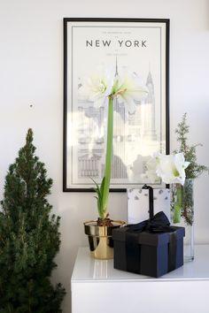 Homevialaura | Holiday season | Christmas flowers | little Christmas tree | Skultuna Flower Pot in brass from Zarro Store
