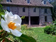 Bartram's Garden is the oldest surviving botanic garden in North America. Located on the west bank of the Schuylkill River, it covers 46 acres and includes an historic botanical garden and arboretum