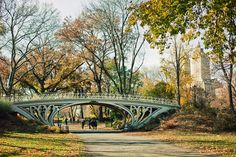 what a beautiful bridge in central park. We walked for hours and didnt make it to this one ... Next trip
