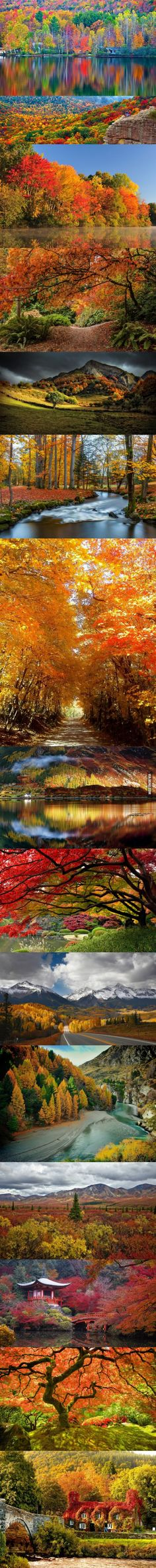 One of the reasons why Autumn is my favorite season