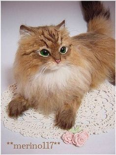 日本 -- Queen of the hand make 羊毛CAT -- merino117 | Blog | 嘰喱咕呶 X Erica - Yahoo! Blog