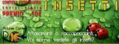 Contest sugli insetti 1€  #contest #concorsi #fotografie #premi #award #photo #insect #macro