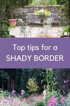 A shady border – the best (and easiest) part of your garden?