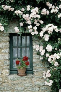 Rosy Window