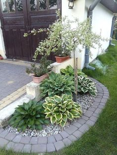 Small Front Yard Landscaping, Landscaping With Rocks, Farmhouse Landscaping, Landscaping Images, Landscaping Software, Landscaping Jobs, Landscaping Plants, Florida Landscaping, Outdoor Landscaping