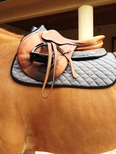 barn-brat: So beautiful. omg. CREDIT Ogilvy Equestrian Approved! Equine, Half Pad, Saddle Pad, Helmet, Saddle, Fashion, Style, Comfort, Equipment, Tack, Horse, Pony, Gray, Chestnut, Bay, Black, Horse Show, Show Jumping, Equitation, Pony