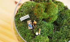 Grow a miniature reality in a jar - Lost At E Minor: For creative people