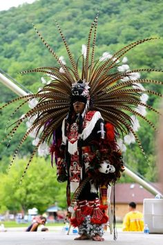 Another majestic looking Cherokee dancer http://traditionalnativehealing.com