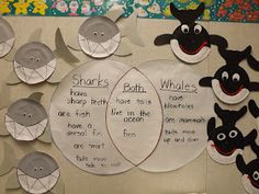 Vento's Kindergarten: Ocean An idea for a research project.vin diagrams for research projects Ocean Projects, Fun Projects, Ocean Habitat, Ocean Activities, Summer Activities, Money Activities, Ocean Unit, Ocean Crafts, Kindergarten Science