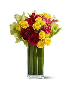 Flowers and Plants - Shop All Flowers and Plants | BHG.com Shop
