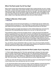 http://packleaderdogtraining.propom.com Dog training report with insights to the pack leader mentality of dogs and you can get control of your dogs behavior making you the leader of the pack.