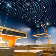 126 Best Acoustic Baffle Ceilings Images In 2019