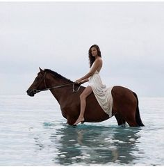 Girl sitting on a horse standing in the water