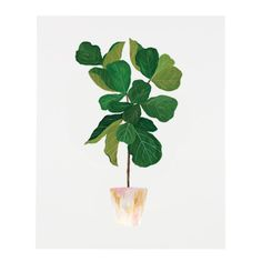 Part of our house plant series, these prints bring life and green to any space. No green thumb or watering necessary. An art print of an original illustr...