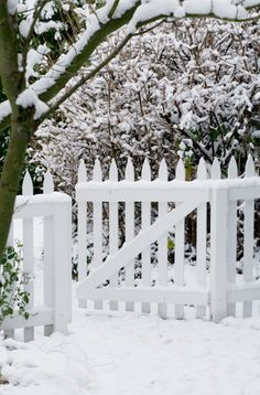 Nancy's fence. (1) From: Tiny White Daisies (2) Follow On Pinterest > Cassie