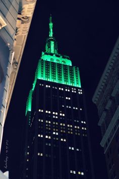 Empire State Bldg  New York City Icon Empire State by CestLaVieArt