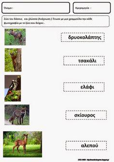 Forest Theme, Farm Animals, Activities, Education, Craft, School, Blog, Creative Crafts, Blogging