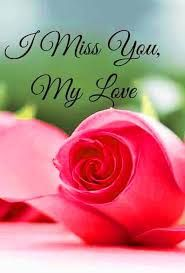 Love wife miss my i 😍 and Emojiology: 😍