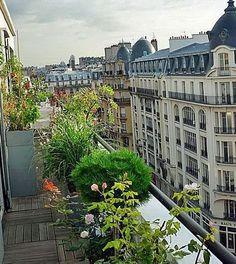 Gagnez de la place au sol sur votre balcon filant en accrochant des plantes à la rambarde !