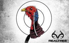 Shot Placement for Turkey Hunting http://realtr.ee/95t Pattern your shotgun to kill gobblers!