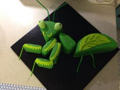 Praying Mantis Cake