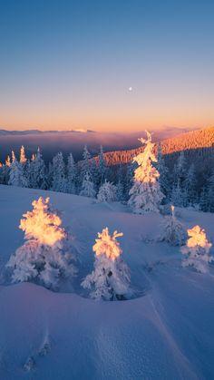 Winter Wallpaper, Christmas Wallpaper, Winter Photography, Nature Photography, Winter Magic, Winter Scenery, Nature Aesthetic, Winter Beauty, Winter Pictures