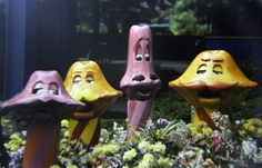 Who wouldn't like to listen to serenading mushrooms. Mushroom barbershop quartet, Kings Dominion