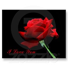 I+Love+You+Postcard