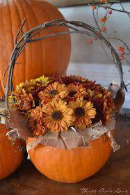 Pumpkin basket arranged with mums, birchbark & a grapevine handle.