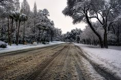 11/23/2010: The Road to Winter by todd landry photography, via Flickr