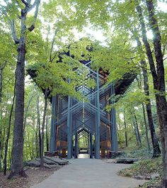 « Thorncrown Chapel », une chapelle située à Eureka Springs dans l'Arkansas. Pensée en 1980 par E. Fay Jones, ancien apprenti de l'architecte Frank Lloyd Wright, cette structure alliant acier et verre se marie parfaitement avec son environnement.