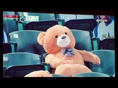 Teddy Bear Gets Hit In The Head By A Foul Ball Teddy Bear, Humor, Toys, Videos, Animals, Activity Toys, Cheer, Animaux, Animal